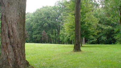 Lincoln Park (Oak Ledges), Main course, Hole 11 Tee pad