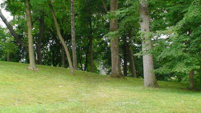 Lincoln Park (Oak Ledges), Main course, Hole 13 Tee pad