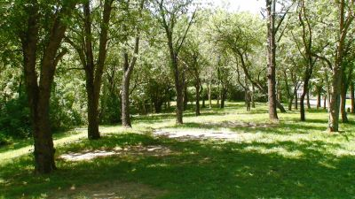 Roscoe Ewing Park, Main course, Hole 5 Tee pad