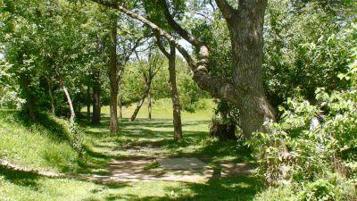 Roscoe Ewing Park, Main course, Hole 8 Long tee pad