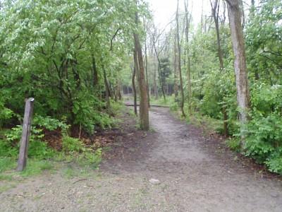 Sycamore Trails, Main course, Hole 1 Tee pad