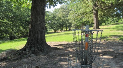 George Ward Park, Main course, Hole 2 Reverse (back up the fairway)