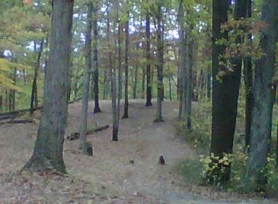 Veterans Memorial Park, Mike Broda Memorial DGC, Hole 15 Tee pad