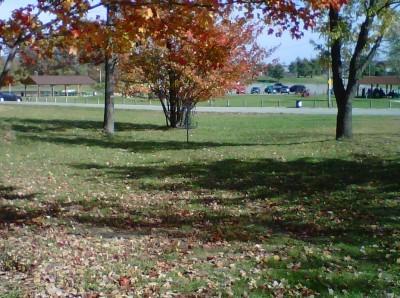 Veterans Memorial Park, Mike Broda Memorial DGC, Hole 10 Short approach