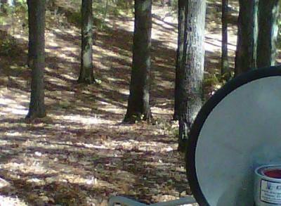 Veterans Memorial Park, Mike Broda Memorial DGC, Hole 17 Reverse (back up the fairway)