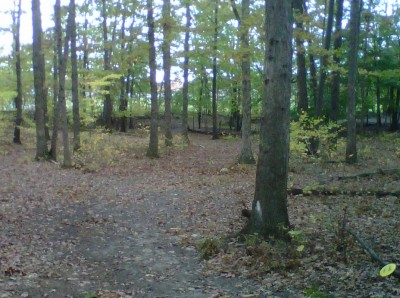 Veterans Memorial Park, Mike Broda Memorial DGC, Hole 12 Short approach
