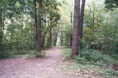 Veterans Memorial Park, Mike Broda Memorial DGC, Hole 9 Long approach
