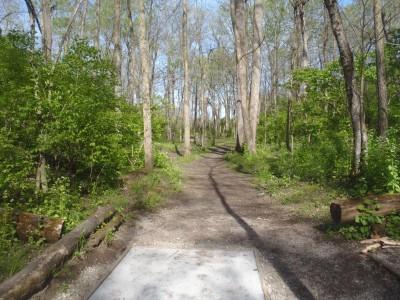 Buck Creek State Park, Main course, Hole 6 Tee pad