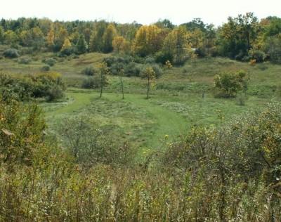 Buck Creek State Park, Main course, Hole 14 Tee pad
