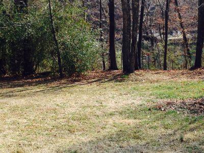 Veterans Memorial Park, Main course, Hole 8 Alternate pin