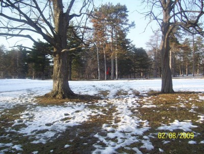 Ottawa Park, Main course, Hole 8 Short tee pad