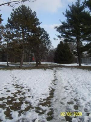 Ottawa Park, Main course, Hole 1 Short tee pad