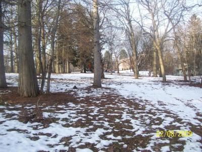 Ottawa Park, Main course, Hole 5 Long tee pad