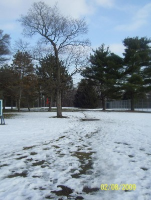 Ottawa Park, Main course, Hole 1 Long tee pad