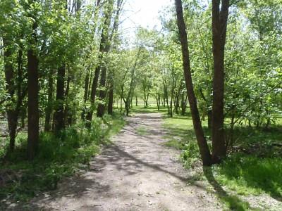 Upper Sandusky Reservoir, Main course, Hole 10 Long approach