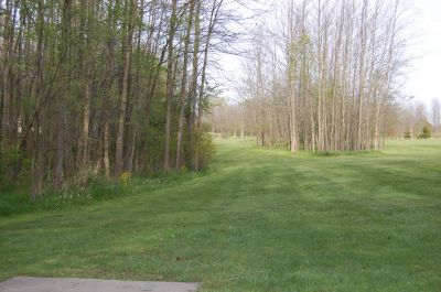 Clarence Darrow Park (Young's Run), Main course, Hole 14 Tee pad