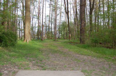 Clarence Darrow Park (Young's Run), Main course, Hole 13 Tee pad