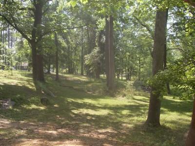 Sparkman Park, Main course, Hole 13 Tee pad