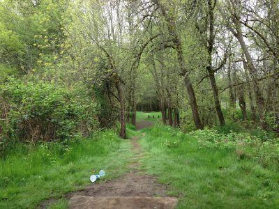 Bryant Park, Main course, Hole 7 Tee pad