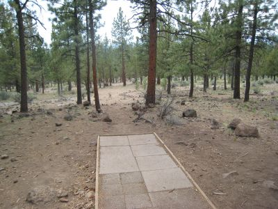 Cascade Forest, Main course, Hole 4 Tee pad