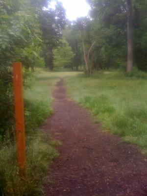 Willamette Park, Main course, Hole 1 Tee pad