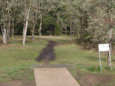 Dexter Park, Main course, Hole 15 Tee pad