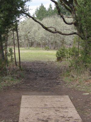 Dexter Park, Main course, Hole 14 Tee pad