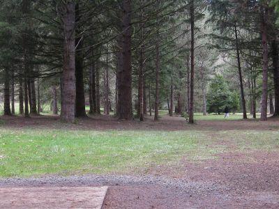 Dexter Park, Main course, Hole 8 Tee pad