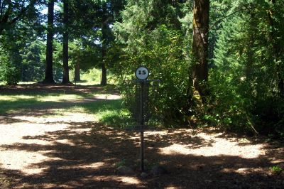 Timber Park, Main course, Hole 15