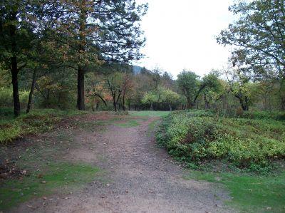Tom Pearce Park, Main course, Hole 8 Long tee pad