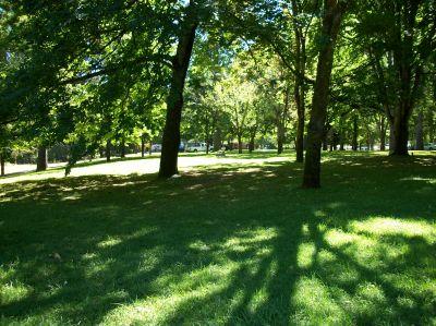 Indian Mary Park, Main course, Hole 8 Tee pad
