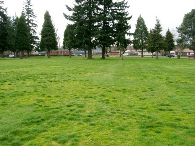 Portland Adventist Elementary School, Main course, Hole 2 Tee pad