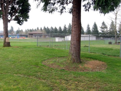 Portland Adventist Elementary School, Main course, Hole 7 Tee pad