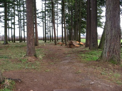 Vance Park, Main course, Hole 2 Tee pad