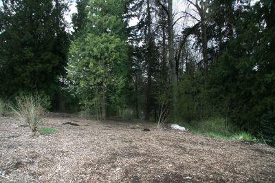 Orchard Park, Main course, Hole 7 Midrange approach