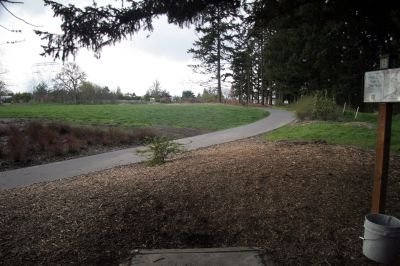 Orchard Park, Main course, Hole 8 Tee pad