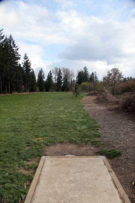 Orchard Park, Main course, Hole 5 Tee pad