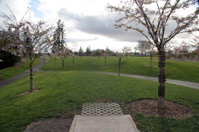 Orchard Park, Main course, Hole 1 Tee pad