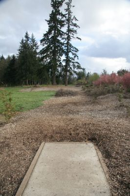 Orchard Park, Main course, Hole 4 Tee pad