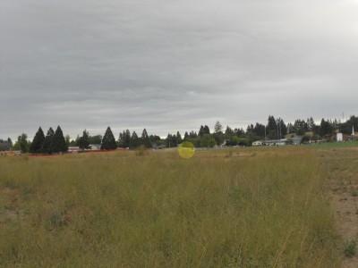 Western Oregon University, Main course, Hole 8 Tee pad