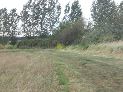 Western Oregon University, Main course, Hole 6 Tee pad