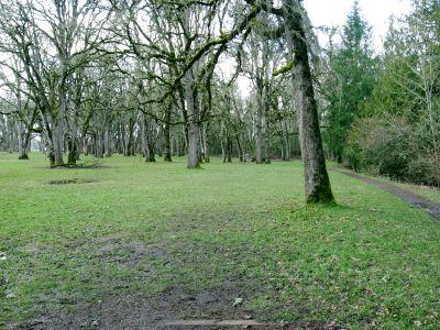 Champoeg State Park, Original course, Hole 12 Tee pad