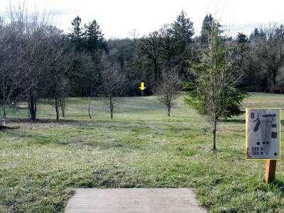 Ewing Young, Main course, Hole 8 Tee pad