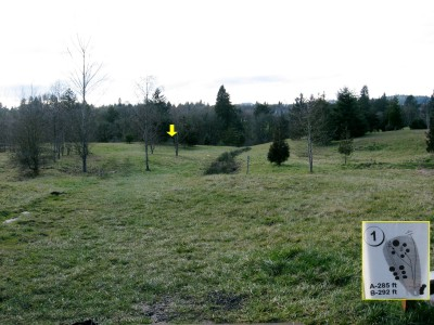 Ewing Young, Main course, Hole 1 Tee pad