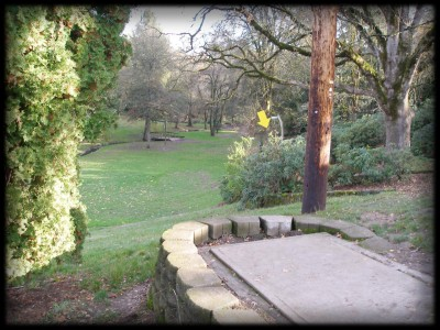 Herbert Hoover Park, Main course, Hole 3 Tee pad