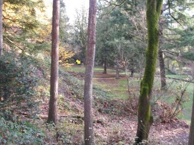 Herbert Hoover Park, Main course, Hole 5 Long approach