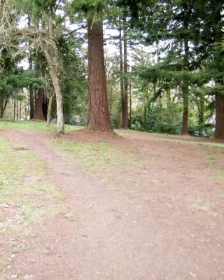 Portland Lunchtime DGC, Main course, Hole 9 Tee pad