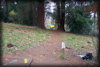Portland Lunchtime DGC, Main course, Hole 7 Short tee pad