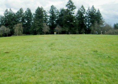 Portland Lunchtime DGC, Main course, Hole 7 Tee pad