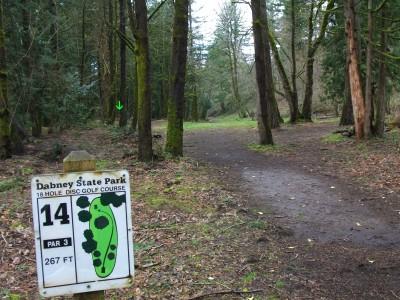 Dabney State Park, Main course, Hole 14 Tee pad